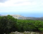 Pantelleria Youth Forum